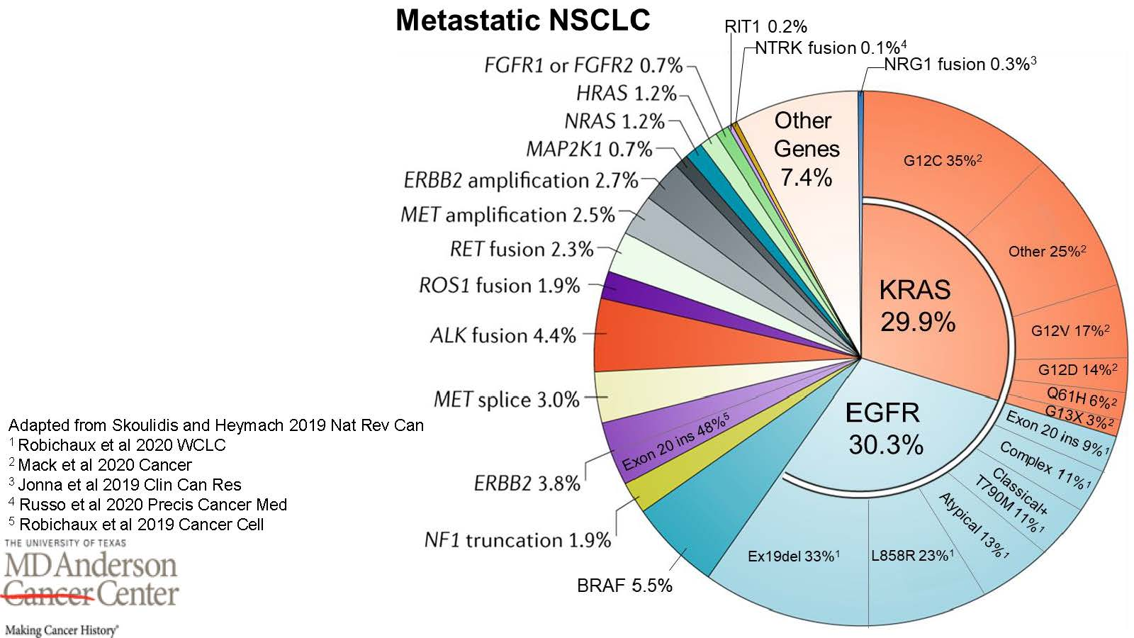 Pie chart graphic showing the various percentages of gene mutations-alterations identified in NSCLC Metastatic Lung Cancer - see text only link for complete alt text